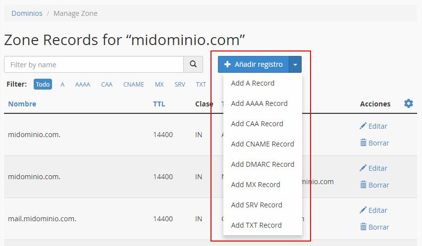 Seleccionar registro DNS
