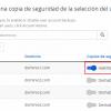 Programar copias de seguridad de algunas cuentas de cPanel
